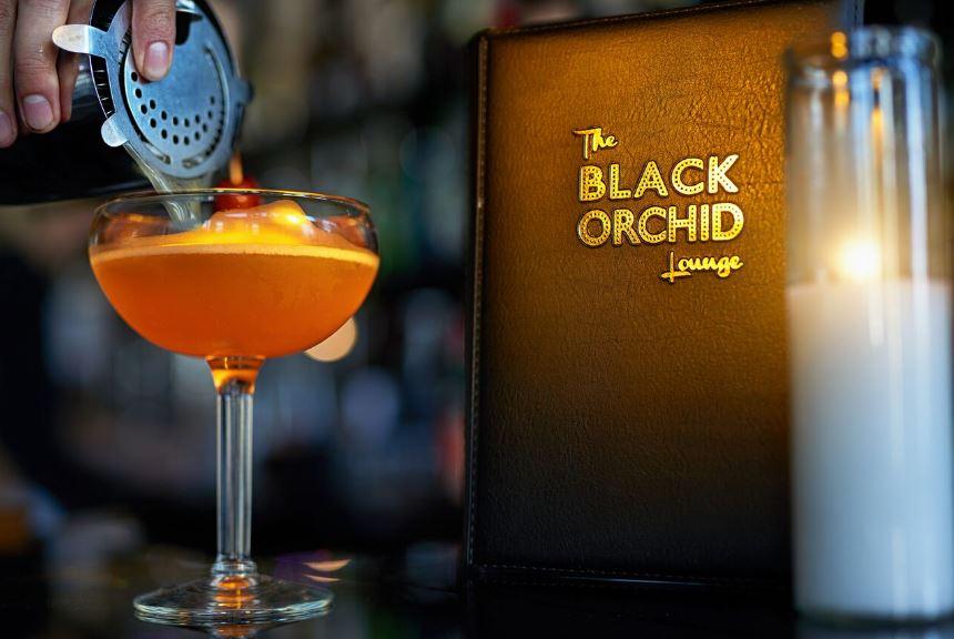 Hidden Gem: The Black Orchid Lounge