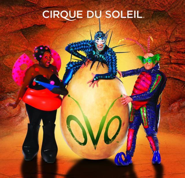 """Cirque du Soleil's """"OVO"""""""