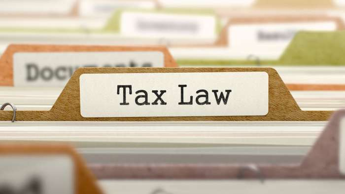 The New Tax Law, Individual and Businesses: What You Need to Know