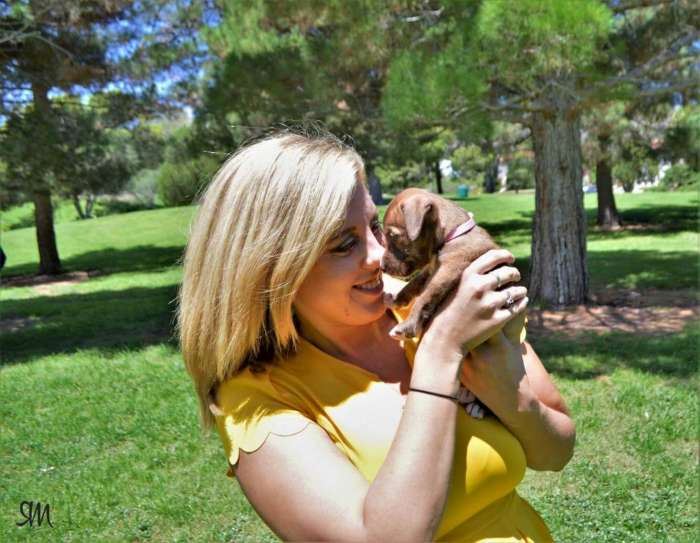 The City Magazine Paw-some Sites for You and Your Pup A