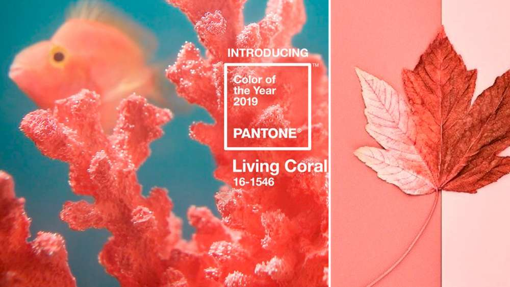 Makeup for 2019 Pantone Color of the Year